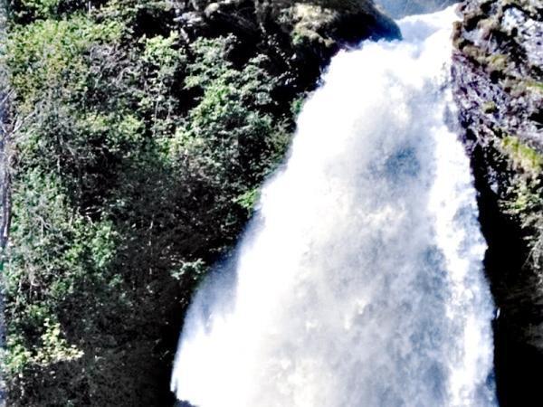 Wasserenergetisierung - Wasserbelebung